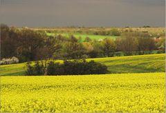 Frühling im Thüringer Land