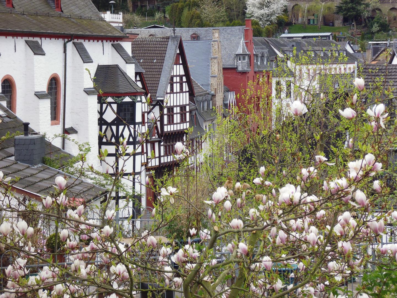 Frühling in Bad Münstereifel