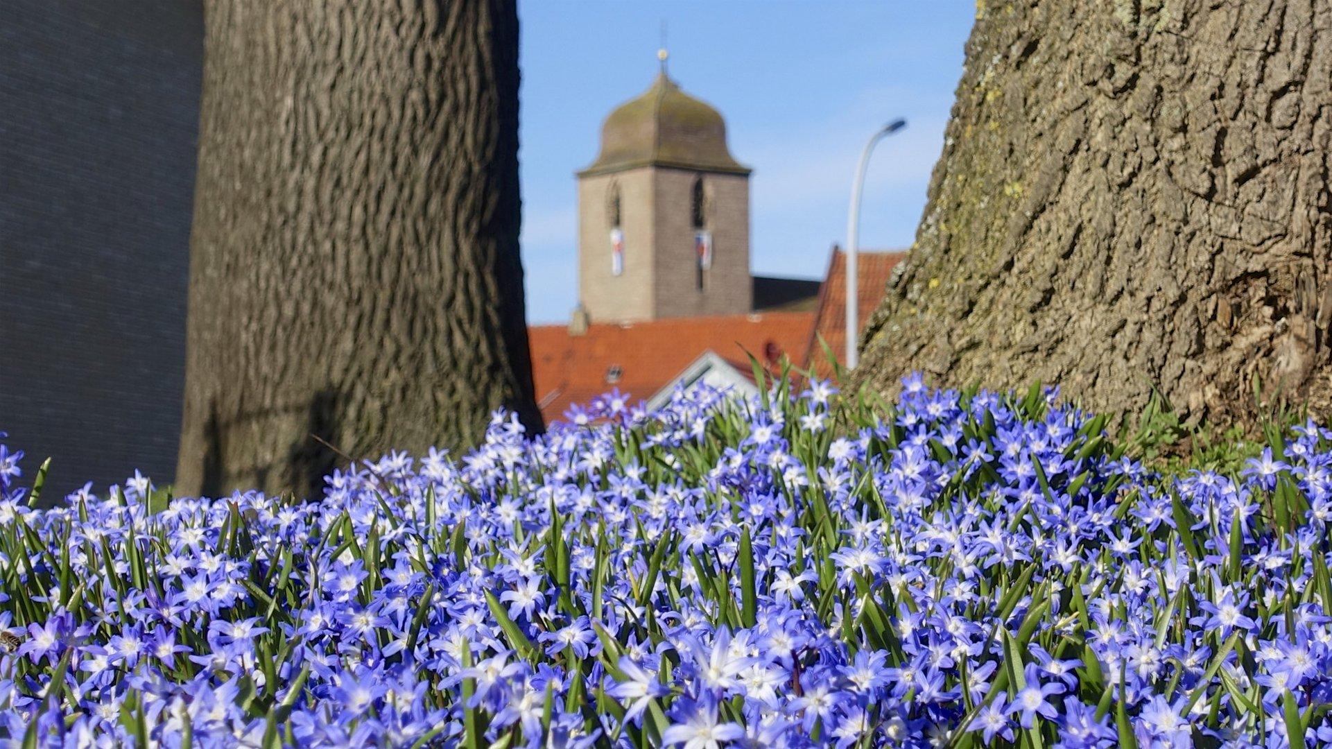 Frühling in Borgentreich 1
