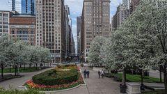 Frühling in Chicago im Mai