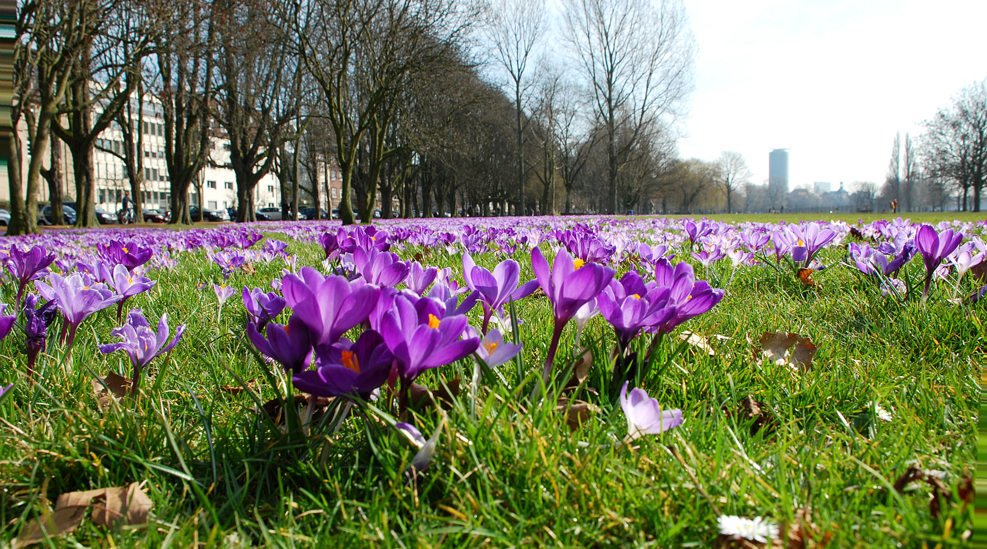 Frühling in der Stadt