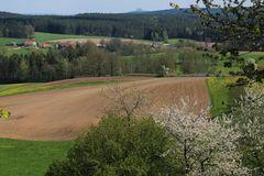 Frühling in Franken