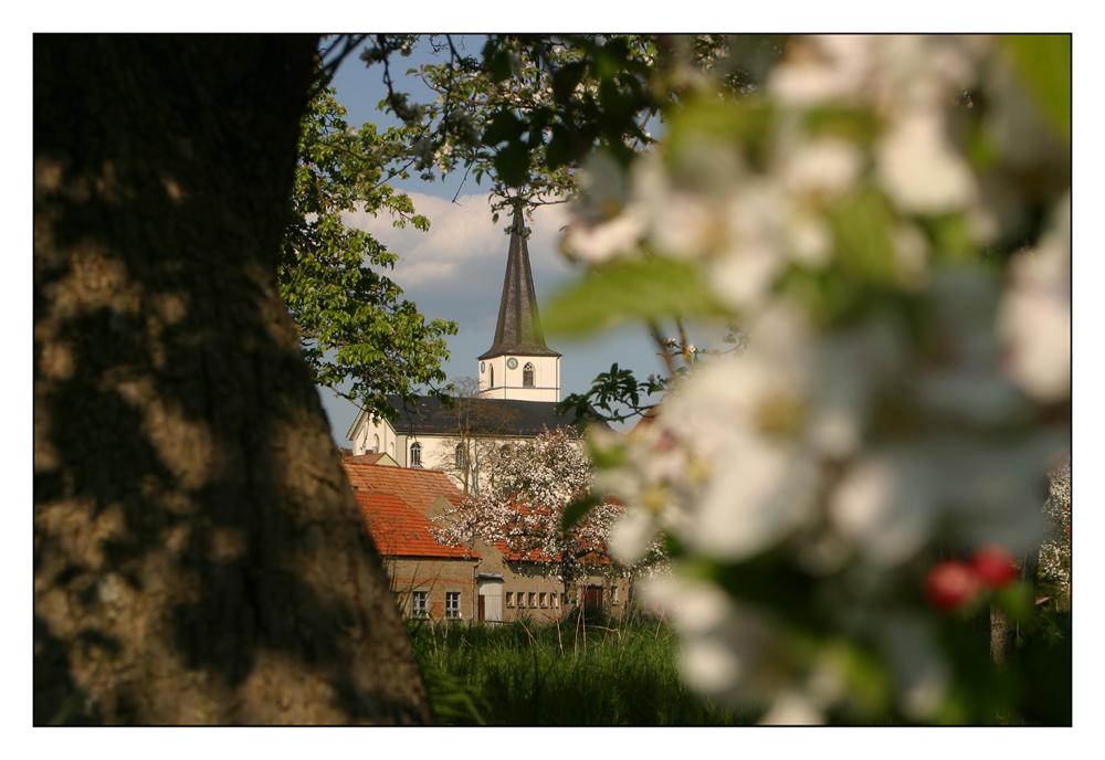 Frühling in Frankenwinheim
