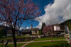 Frühling in Gosau
