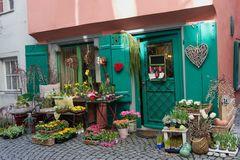 Frühling in Lindau