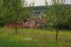 Frühling in Neckarburken