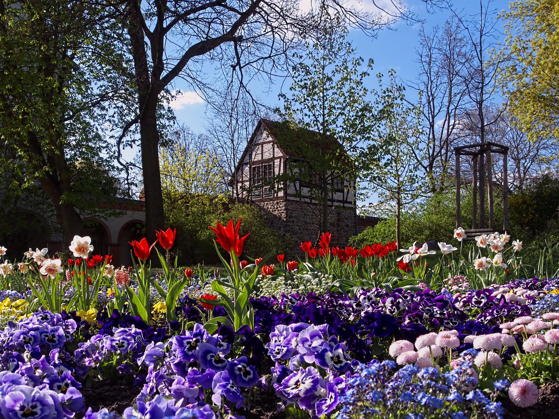 Frühling in Neubrandenburg Foto & Bild | jahreszeiten, frühling ...