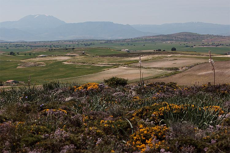 Frühling in Spanien