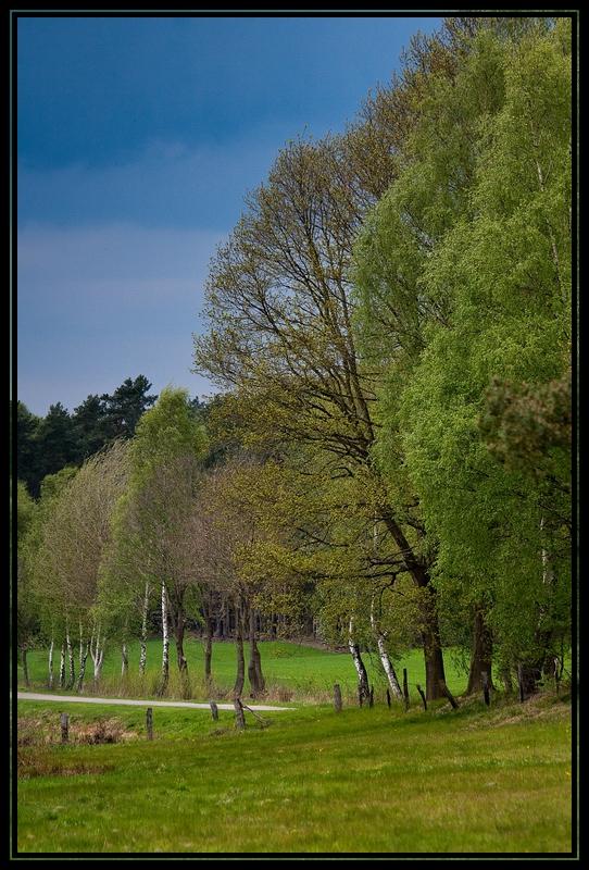 Frühling in Stöckse