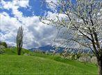 Frühling in Weggis