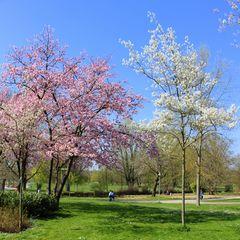 Frühling ist die schönste Zeit