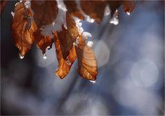 Frühling ist, wenn die Sonne Schnee und Eis zum Schmelzen bringt.