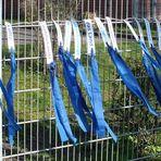 Frühling lässt sein blaues Band...........