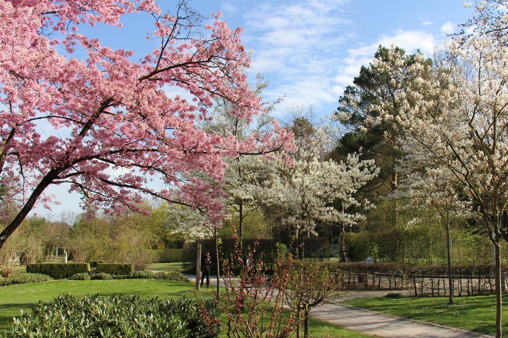 Frühling macht Laune!