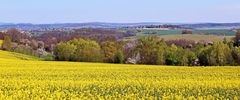 Frühling pur trotz der Trockenheit seit 4 Wochen im Elbtal