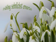 Frühling sehnlichst erwartet