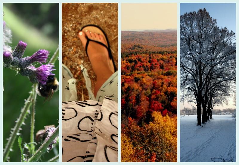 Frühling. Sommer. Herst. Winter