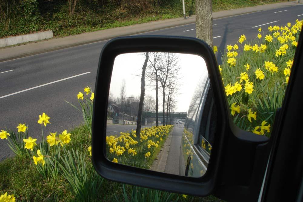 Frühling - soweit der Spiegel reicht