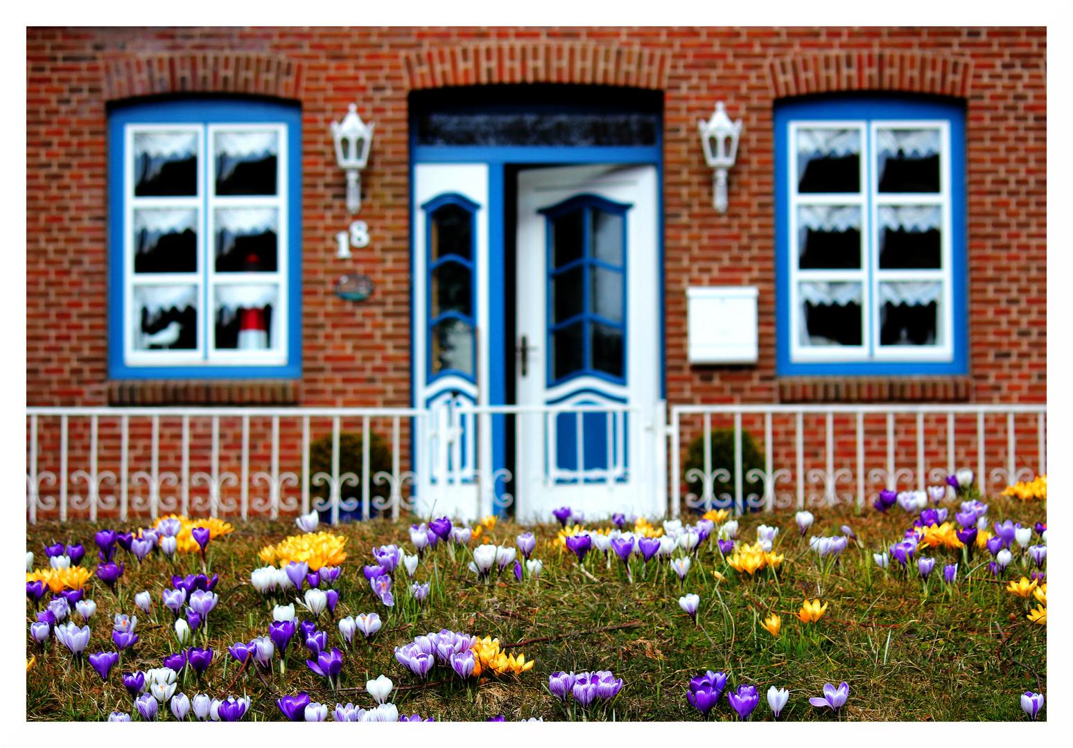 Frühling vor der Tür