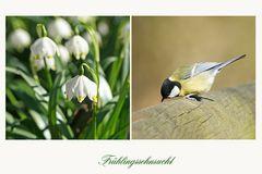 Frühlings.....
