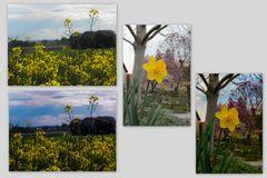 Frühlings Bearbeitung