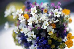 Frühlings - Blumenstrauß