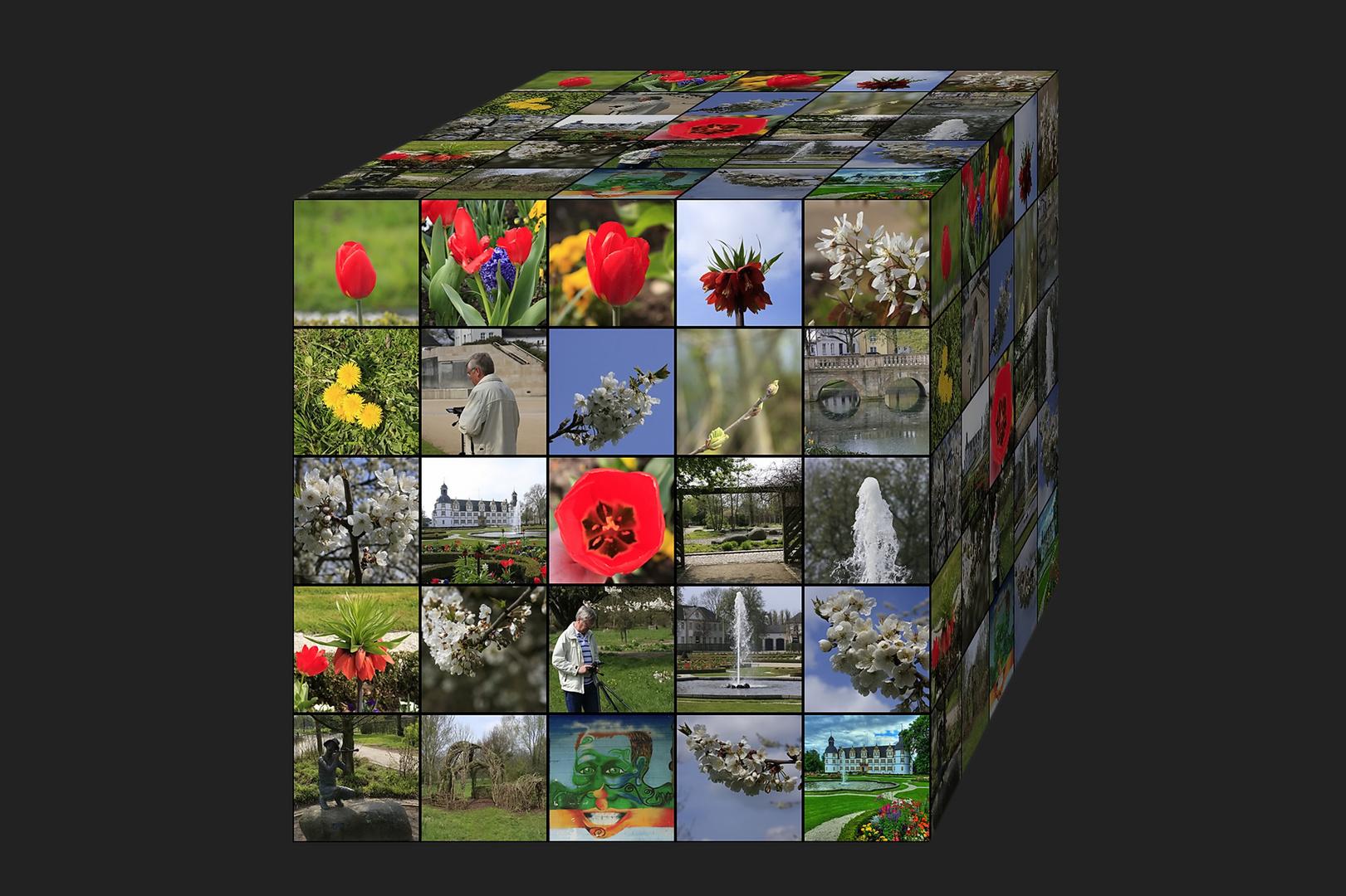 Frühlings ~ Collage