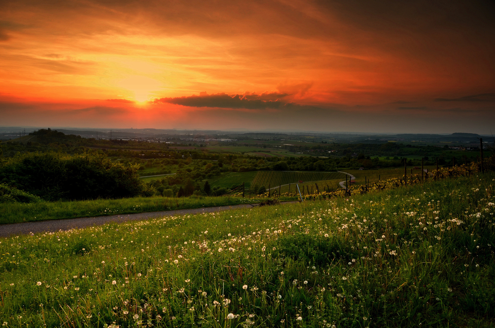 Frühlingsabend, abschalten, die Weite genießen...