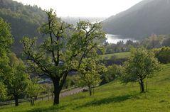 Frühlingsabend im Neckartal