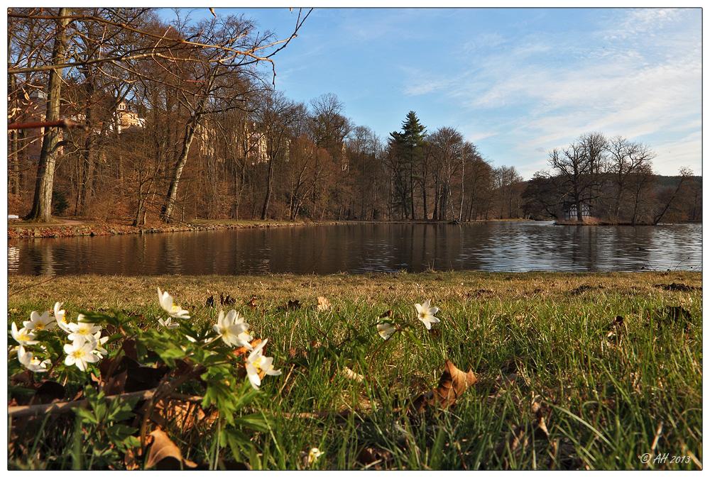 Frühlingsabend im Park