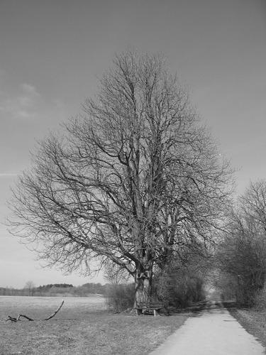 Frühlingsbeginn in Ostwestfalen