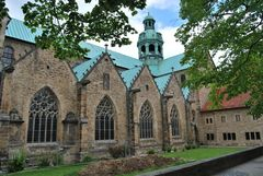 Frühlingsboten am Dom zu Hildesheim