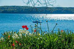 Frühlingserwachen am Bodensee in Überlingen
