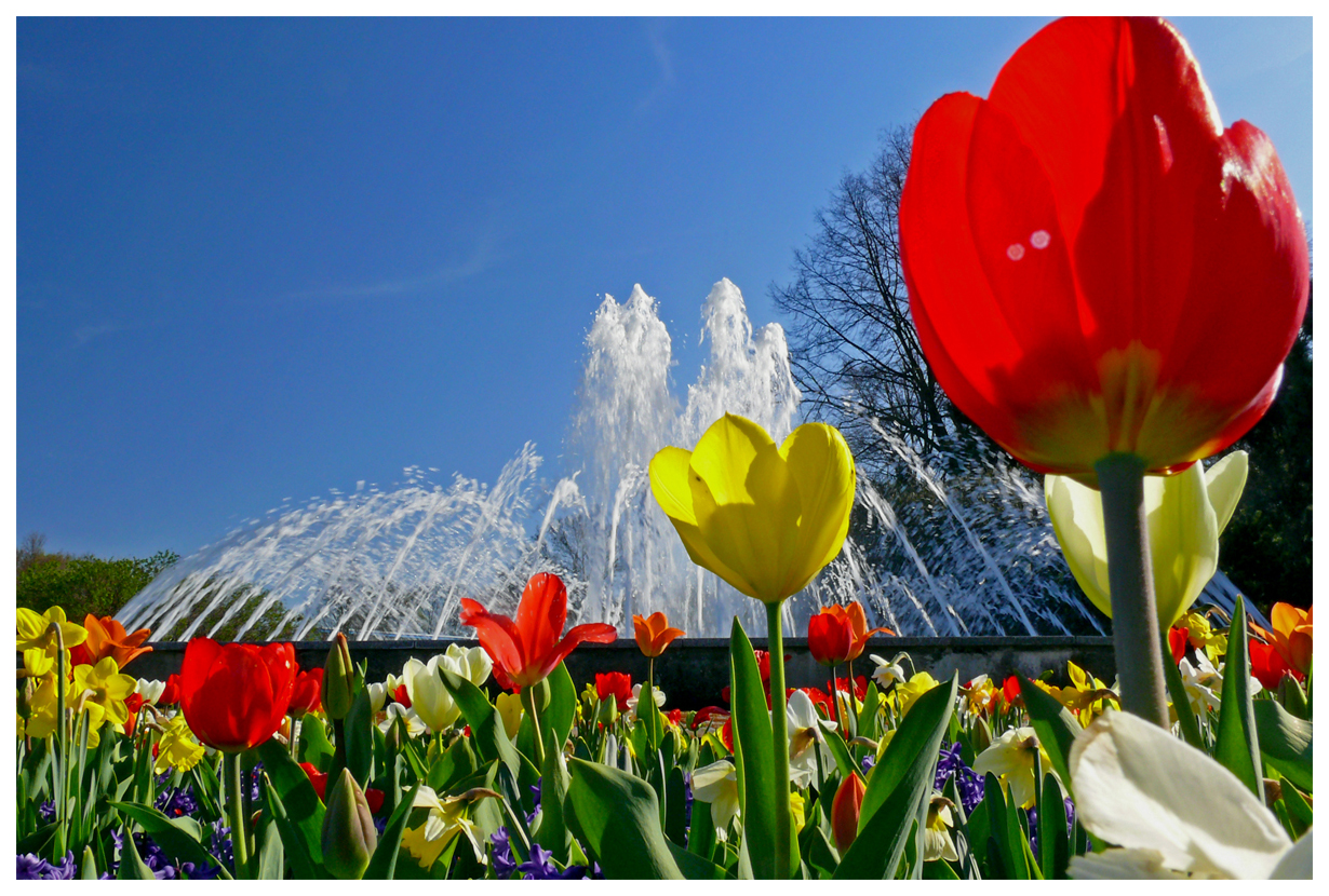 Frühlingserwachen auf der EGA