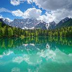 Frühlingsfarben am Bergsee