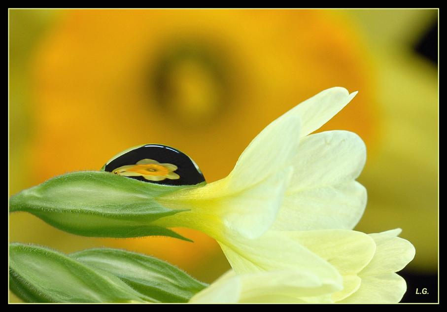 Frühlingsgefühl 2