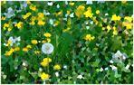 Frühlingshafte Bastelarbeit