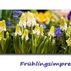 Frühlingsimpression