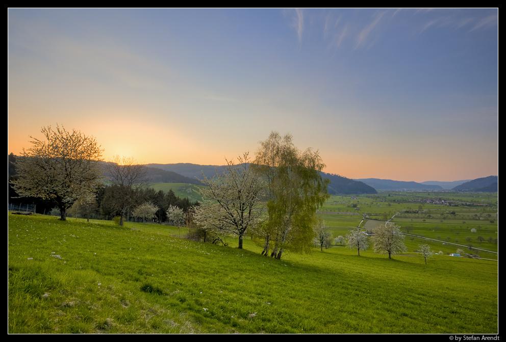 Frühlingslandschaft II