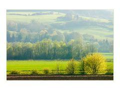 Frühlingslicht scheint ins Land... - (noch ein Augen-Spazier-Bild)