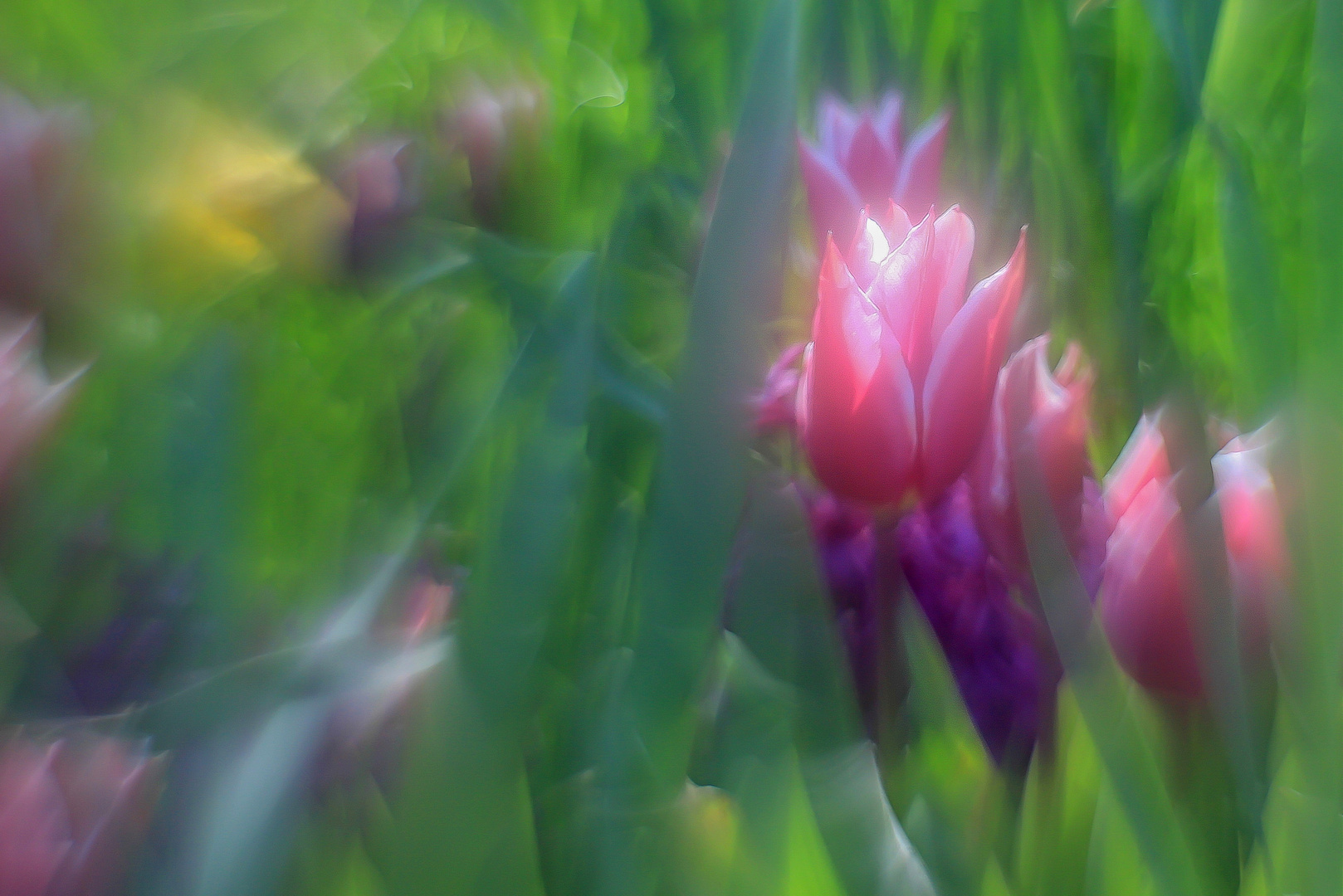Frühlingspastell