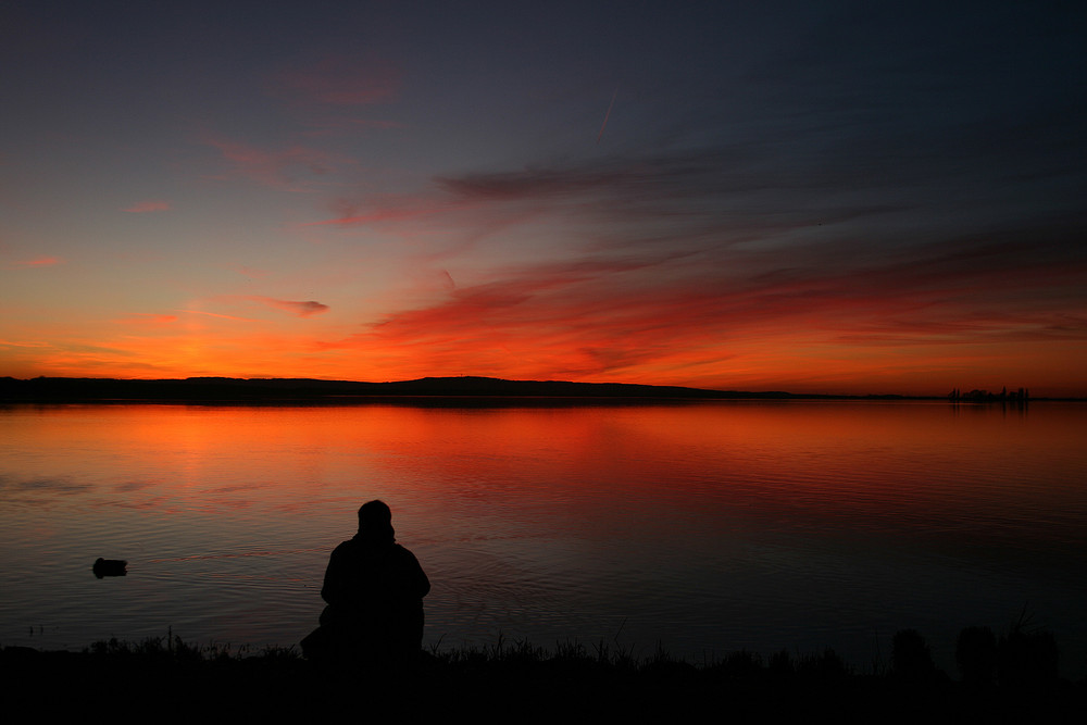 Frühlingssehnsucht - einsamer Fotograf am Steinhuder Meer