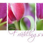 Frühlingssorbet