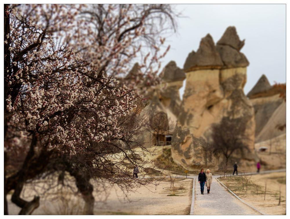 Frühlingsspaziergang im Märchenland