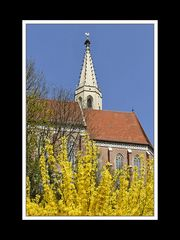 Frühlingsspaziergang von Neu- nach Altötting