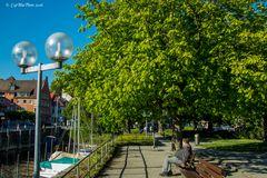 Frühlingsstimmung am Bodensee