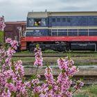 Frühlingstour Tschechien III