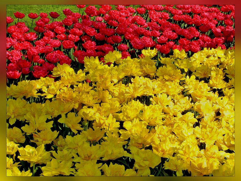 Frühlingsurlaub