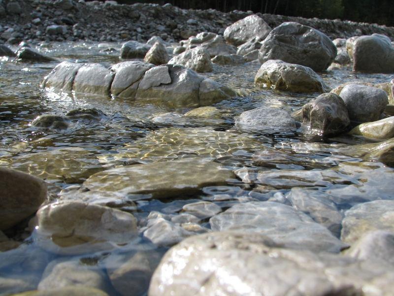 Frühlingswasser