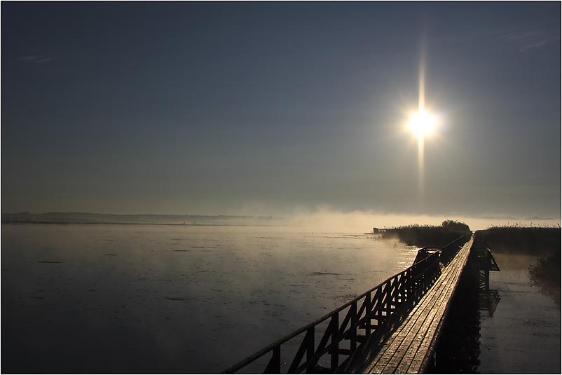 frühmorgens am Federsee